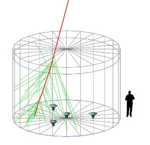 Figure 2. Diagram of a HAWC Cherenkov detector, with a person shown for scale. Inside the Cherenkov detector, a high-energy charged particle (red line) produces Cherenkov light (green lines) as it moves from top to bottom through the tank. The Cherenkov light is recorded by four highly sensitive photo-sensors placed at the bottom of the Cherenkov detector. By combining measurements from many tanks the properties of the original gamma ray or cosmic ray can be inferred.
