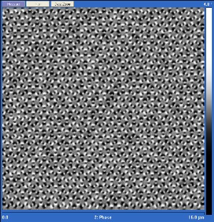 Magnetic force microscope honeycomb spin ice.jpg -- Caption: Magnetic force microscope image of emergent domains of ordered magnetic charges in honeycomb artificial spin ice. The black and white dots in the image are the north and south magnetic poles of the nanomagnets